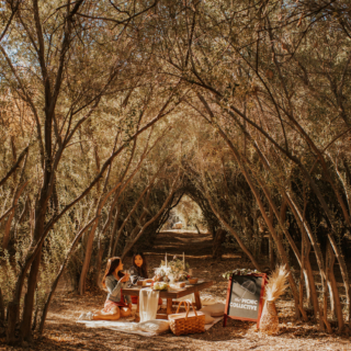 olive grove page