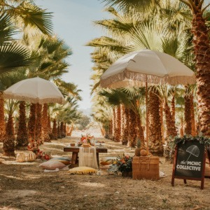 The Palm Grove | Outdoor event location | Greengale Farms | Las Vegas Wedding Venue